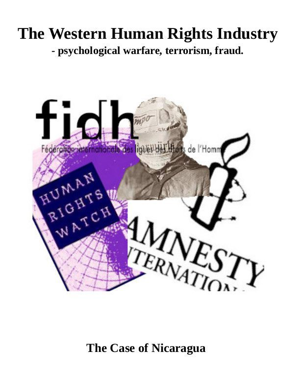 The Wester Human Rights Industry cover